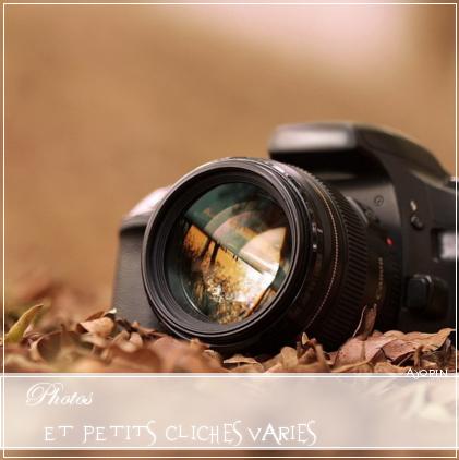 『 Photographie 』