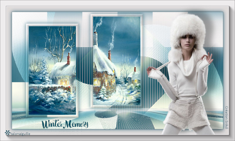 *** Winter Memory  ***