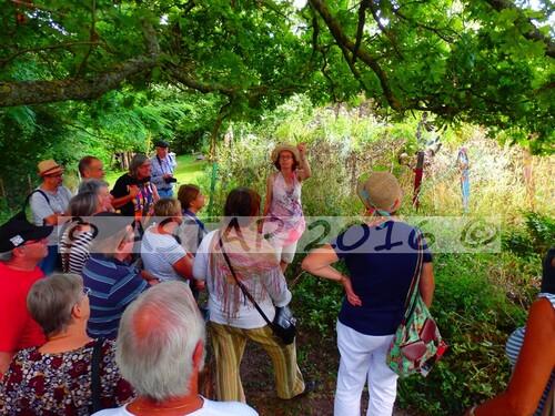 Visite des jardins des plantes à couleurs