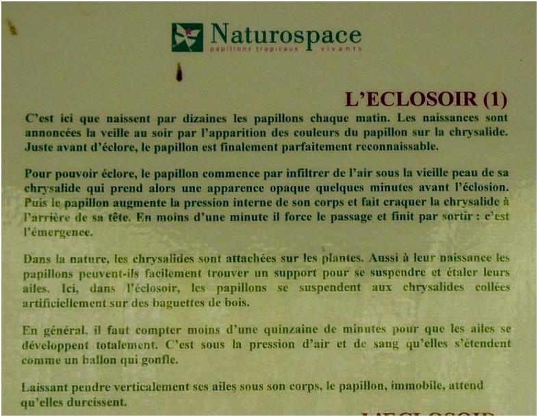 Naturospace 2