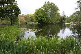 Le lac principal des jardins botaniques royaux de Kew
