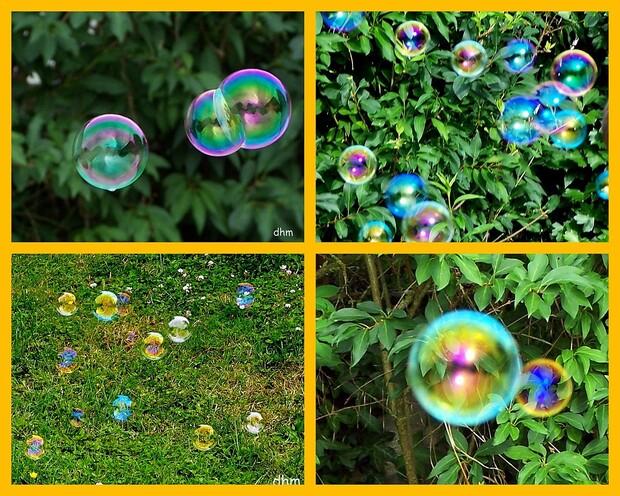 2009-07-20---bulles-alexis.jpg