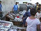 poisson-Port-d-Essaouira7.jpg