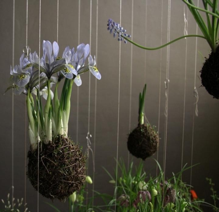 Art floral / Kokedama : kesako ?