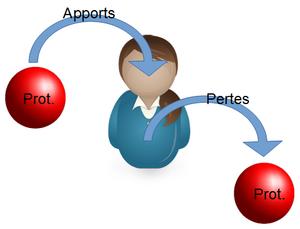 - Nutriments - Protéines -