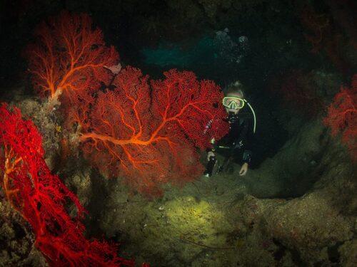 Grotte de Donga Hienga - Hienghène - Nouvelle Calédonie