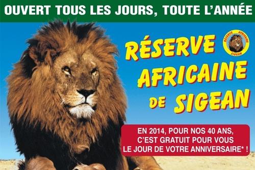 La visite de la réserve africaine de Sigean