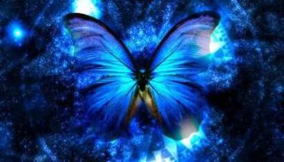 f.info Papillons du Yoga