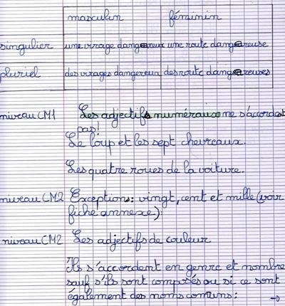 AMF 13G L'accord de l'adjectif
