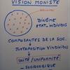 Vision moniste