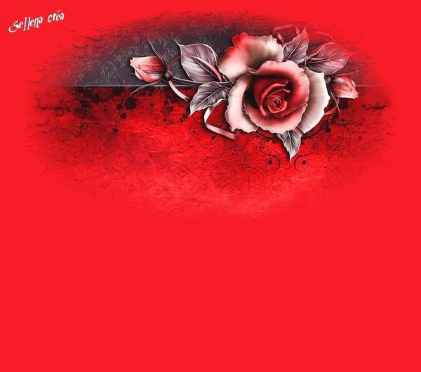 Papiers**Roses Flamboyantes !**