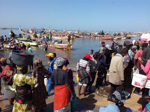 4 - Sénégal  2