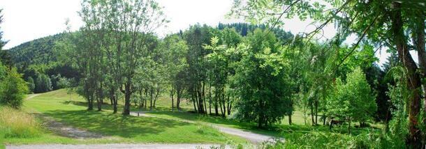 Le camping adossé à la colline