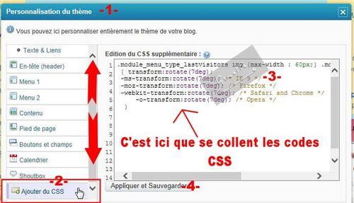 10-Où coller les codes CSS ?