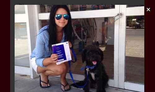 Une touriste britannique adopte le chien qui l'a sauvée.