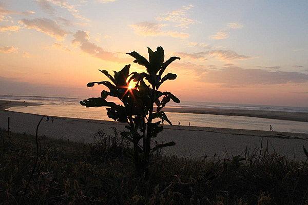 couchers-de-soleil-landais 3586