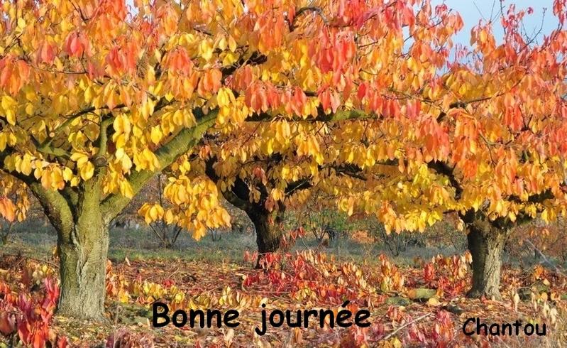 CHANTOUVIVELAVIE : BONJOUR - JEUDI 12 09 2019