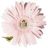 fleur femme.jpg