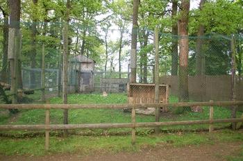 Parc animalier Bouillon 2013 enclos 268