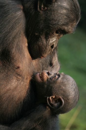 The depth of love is so evident between this mom and her baby.