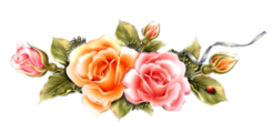 Papiers**Roses anciennes**