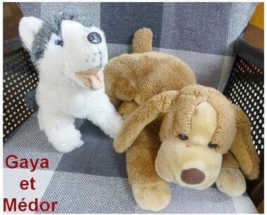 Gaya et Médor