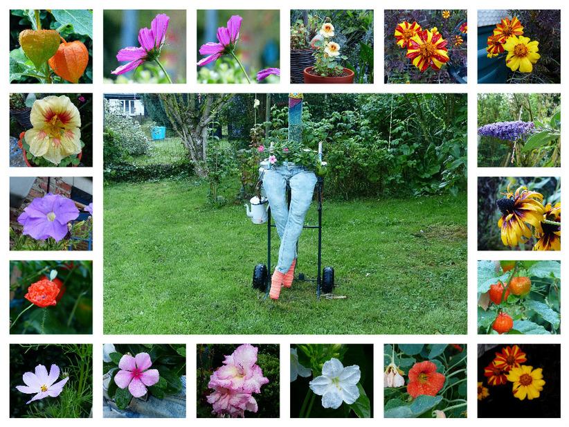 Au fil des jours, mon jardin