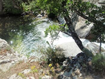 Le ruisseau d'Ercu