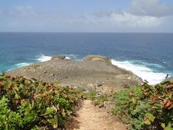 "Balade "" la trace des falaises"" Anse Bertrand"