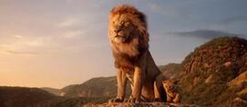 Tout est bon dans « Le Roi lion » - Le Point