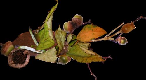 Őszi díszítők