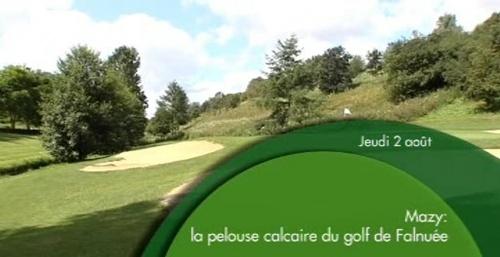 Terrain de golf et biodiversité