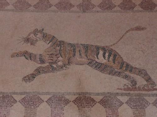 Chypre paphos maison dionysos tigre