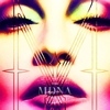 MDNA Tour - Official Tourbook