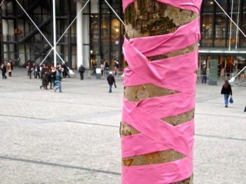 rose arbre Beaubourg