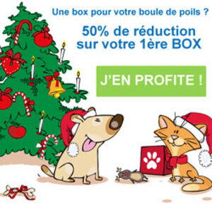 La Max et Kitty Box