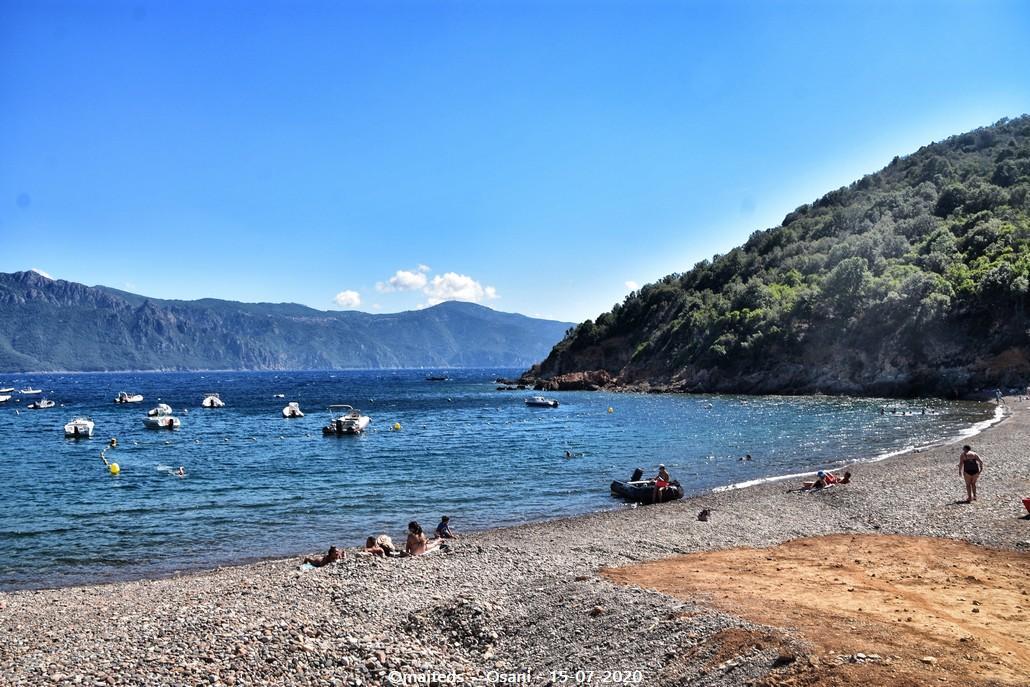 Osani - Corse