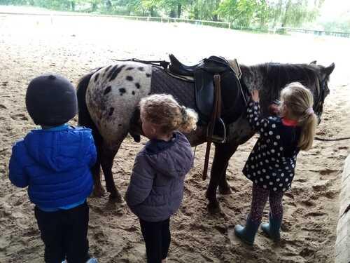 Séances de poney pour les maternelles