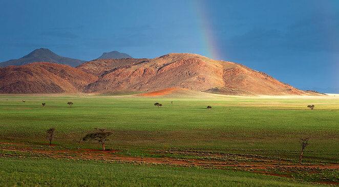 admirez-le-magnifique-desert-de-namibie-grace-a-ces-fantastiques-photographies20