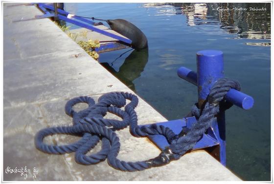 Couleurs sur le Port de Sète