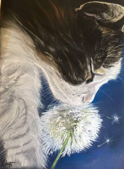 Tableau du samedi : Chat Pastel