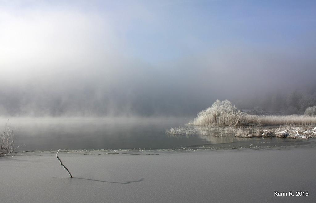 Entre glace et eau