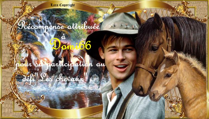 """Récompenses du défi""""Les chevaux"""""""