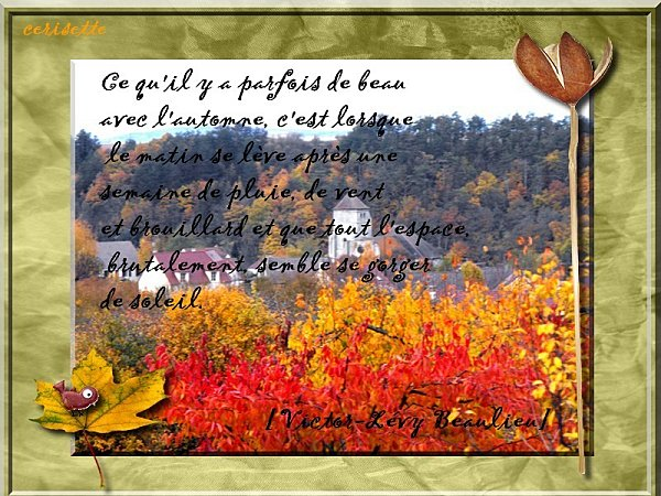 citation-automne-copie-1.jpg