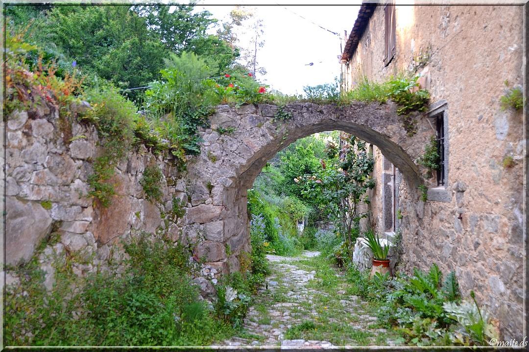 Fleurs et verdure à Ville-di-Paraso - Corse - 9/05/2014