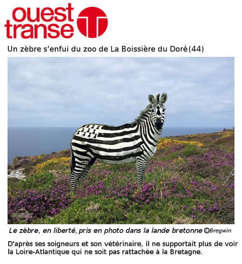 Presse Bretagne