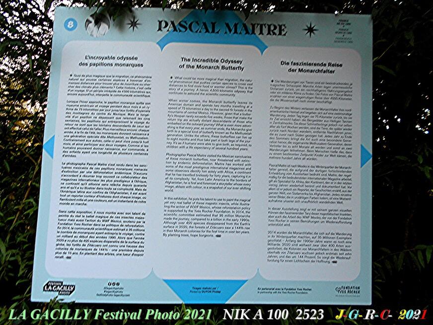 08 A. L. P. 2021 L-G:  PASCAL MAITRE Odyssée des papillons monarques 2/2  D  08-10-2021