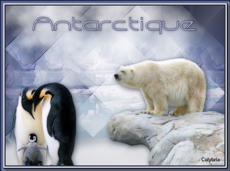 antarctique section2