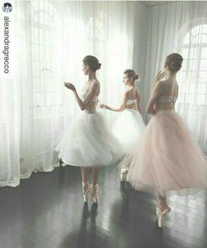 dance ballet ballet class ballet pointes class