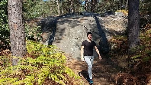 virée en forêt de Fontainebleau - gorges de Franchard